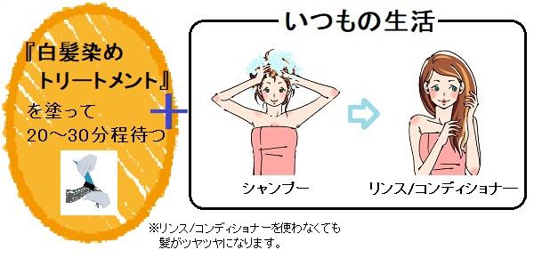 白髪染めトリートメント(乾いた髪用)を使うタイミング