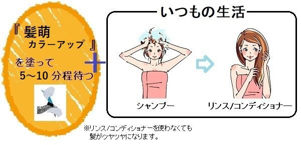 髪萌カラーアップの使い方