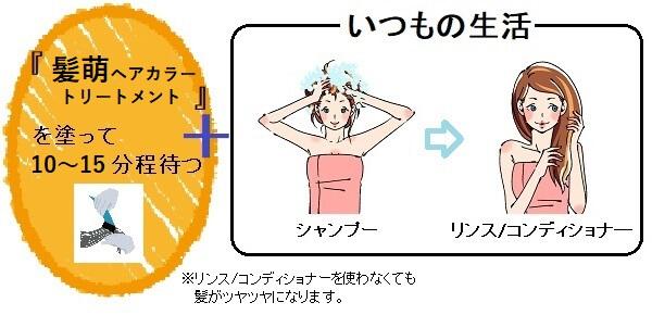 髪萌ヘアカラートリートメントの使い方