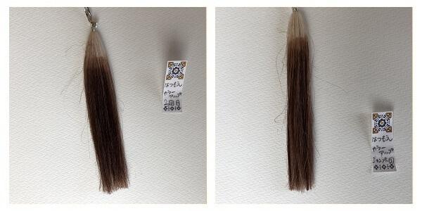 髪萌カラーアップ3回目、シャンプー2回目
