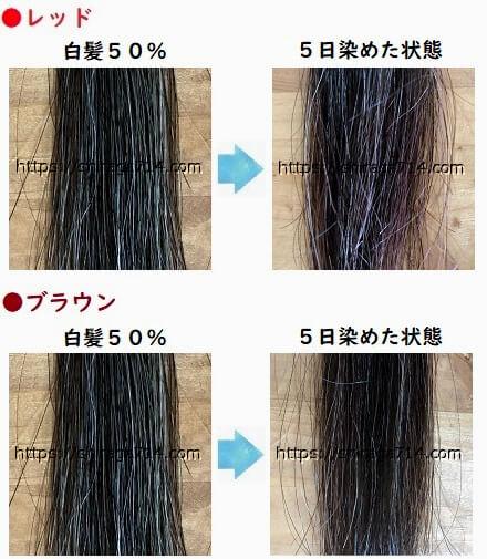 エブリ レッドとブラウンの白髪50%の染め写真