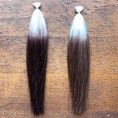 ラサーナと茶色の比較