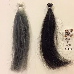 サロンドプロの染まりと黒髪の比較