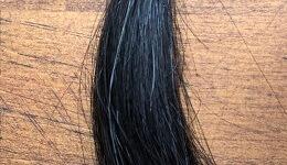 黒髪に混じる数本の白髪