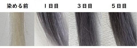 メンズビゲンカラーリンスの染まり具合写真