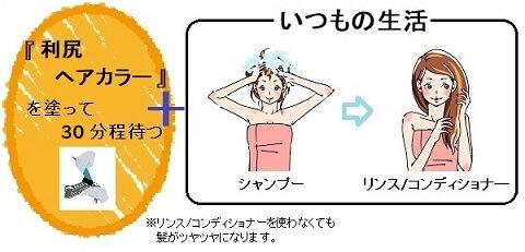 利尻ヘアカラートリートメントの乾いた髪への使い方