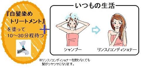 白髪染めトリートメント(乾いた髪用)の使い方