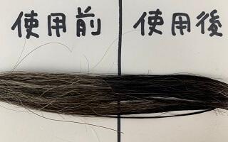 RootVanish白髪かくしで染めた髪
