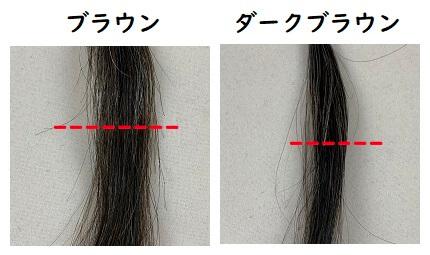 マイナチュレ カラートリートメント 白髪50%の染まり検証