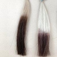 サイオス カラートリートメントとダークブラン髪の比較