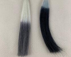 ビゲンカラートリートメントと黒髪の比較